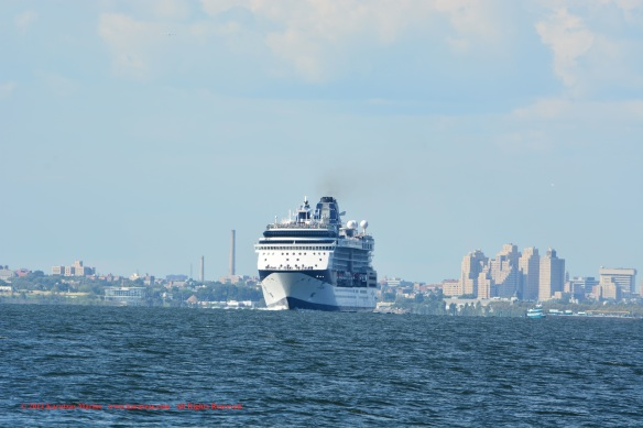 MV CELEBRITY SUMMIT 1