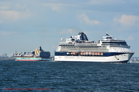 MV CELEBRITY SUMMIT 3
