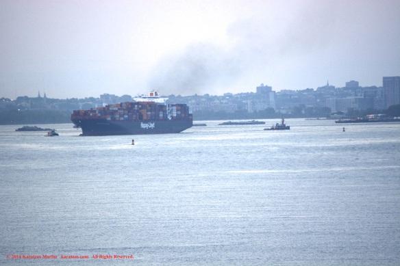 MV FRANKFURT EXPRESS 1