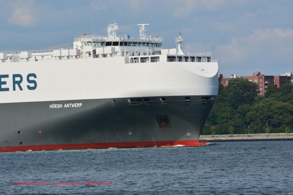 MV HOEGH ANTWERP 4