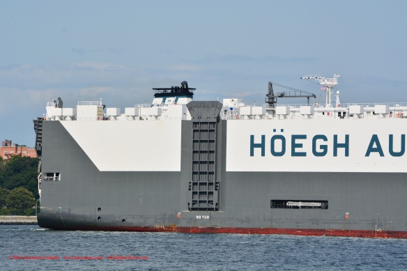MV HOEGH ANTWERP 5