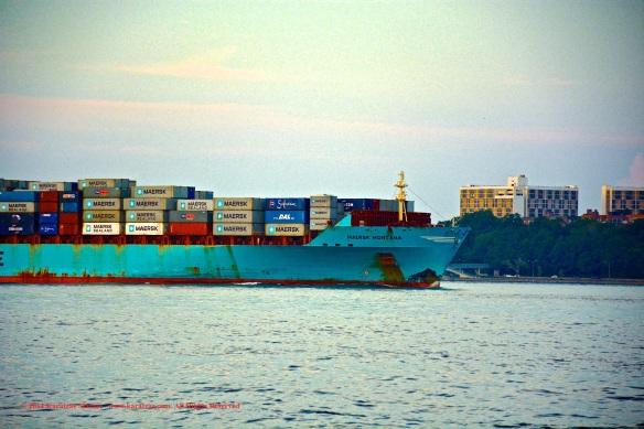 MV MAERSK MONTANA 4