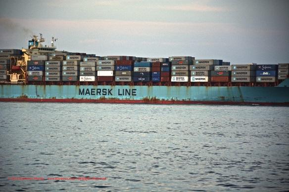 MV MAERSK MONTANA 5