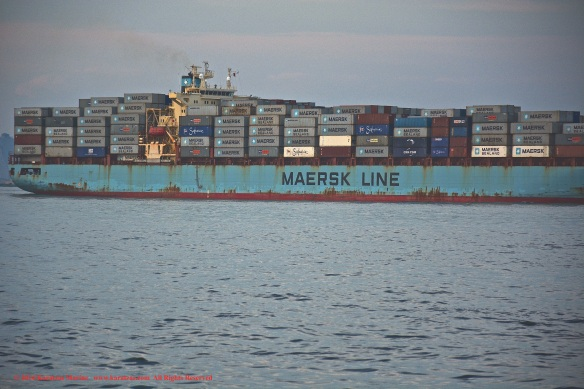 MV MAERSK MONTANA 6