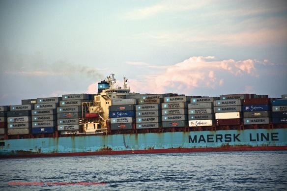 MV MAERSK MONTANA 7