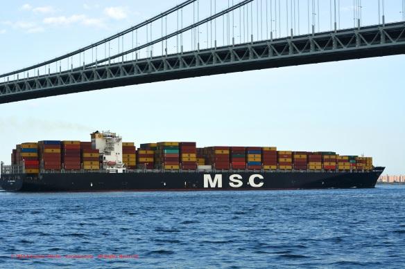 MV MSC MARIA ELENA 10
