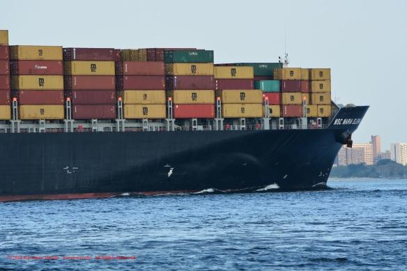MV MSC MARIA ELENA 11