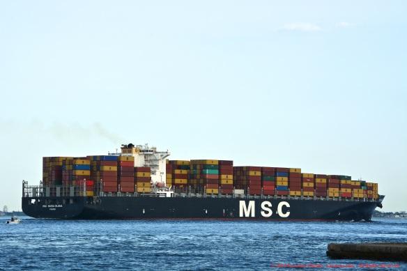 MV MSC MARIA ELENA 12