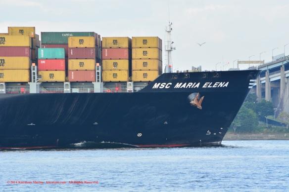MV MSC MARIA ELENA 7