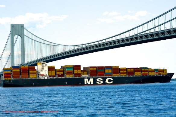 MV MSC MARIA ELENA 9