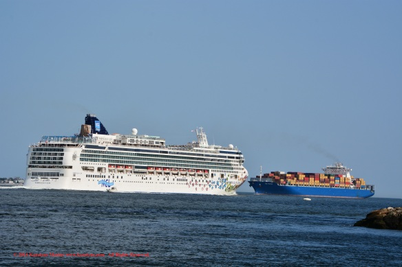 MV NORWEGIAN GEM 11
