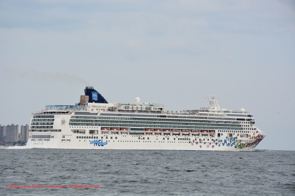 MV NORWEGIAN GEM_B 12