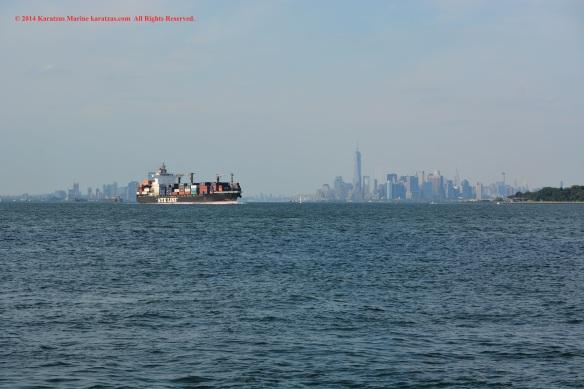 MV NYK CLARA 3