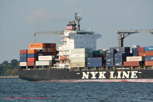 MV NYK CLARA 6