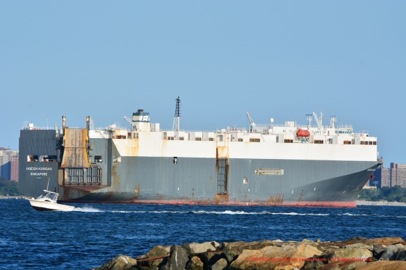 MV HOEGH KUNSAN 12