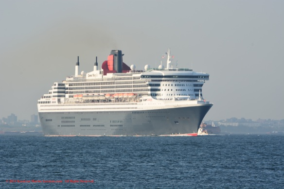 MV QUEEN MARY 2_1