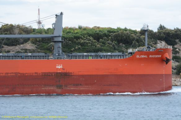 MV GLOBAL SUCCESS 5