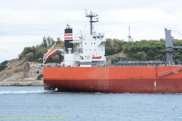 MV GLOBAL SUCCESS 6