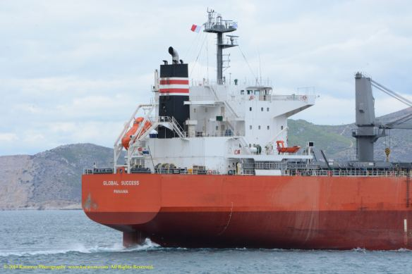MV GLOBAL SUCCESS 7