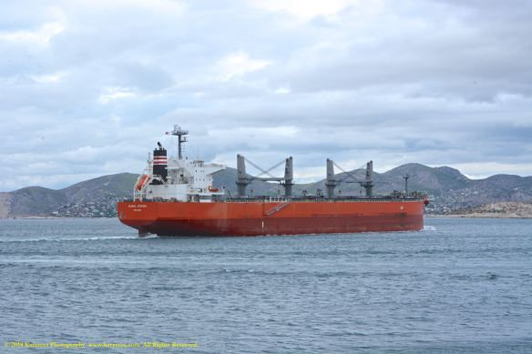 MV GLOBAL SUCCESS 9