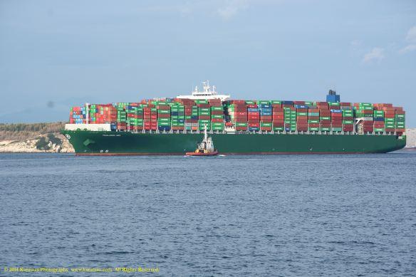 MV THALASSA NIKI 1