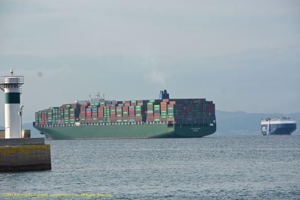 MV THALASSA NIKI 12