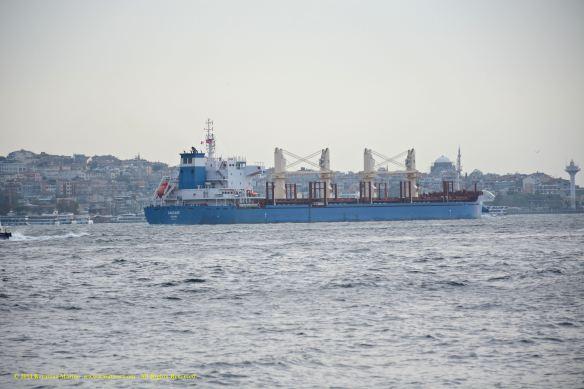 MV CASCADE 12