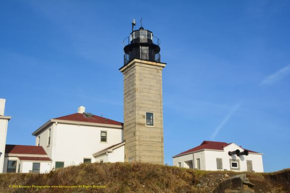Lighthouse Beavertail 10