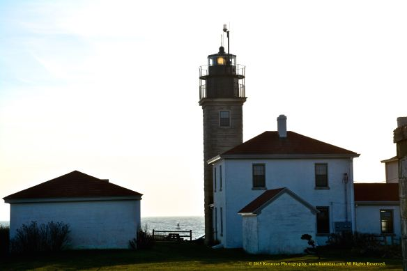 Lighthouse Beavertail 12
