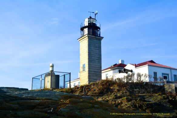 Lighthouse Beavertail 7
