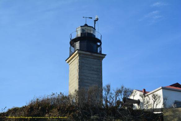 Lighthouse Beavertail 9