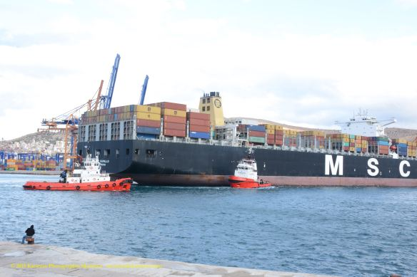 MV MSC PARALLO 10