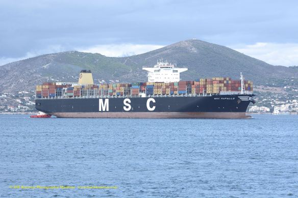 MV MSC PARALLO 1