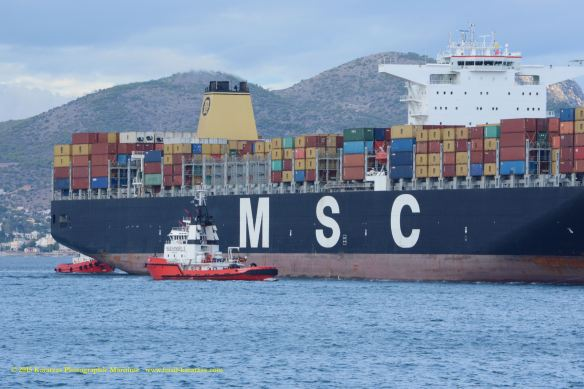 MV MSC PARALLO 4