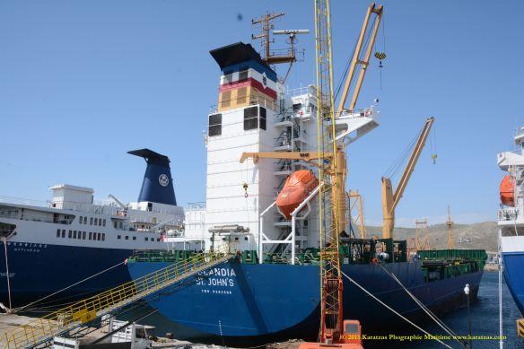 MV HOLANDIA 6