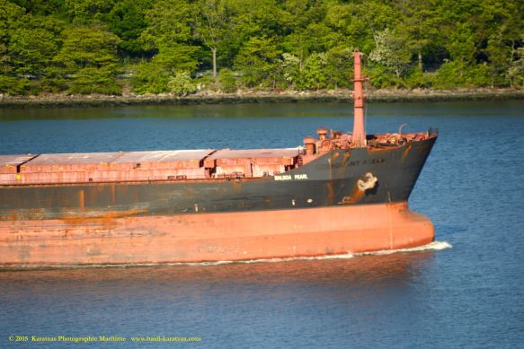 MV BALBOA PEARL 8