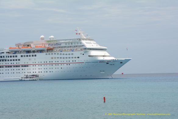 MV CARNIVAL PARADISE 9