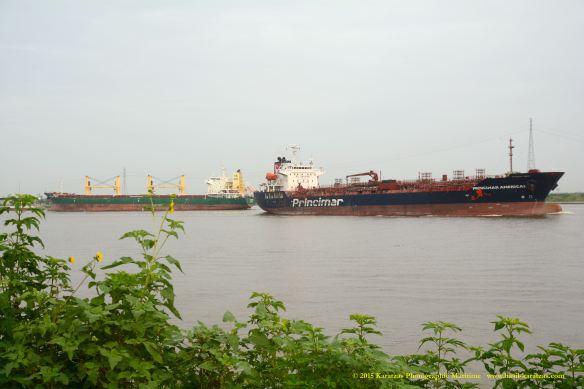 MT PRINCIMAR AMERICAS 6 W MV HARLEQUIN