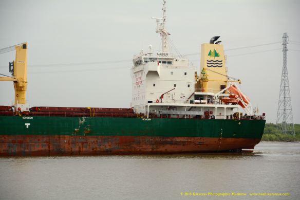 MV HARLEQUIN 6