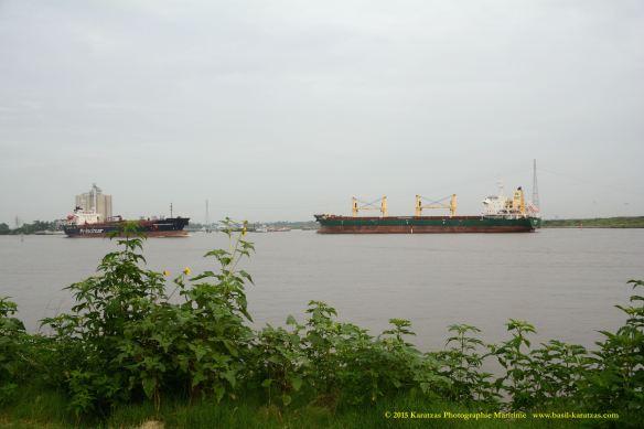 MV HARLEQUIN 8 W PRINCIMAR AMERICAS