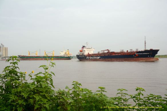 MV HARLEQUIN 9 W PRINCIMAR AMERICAS