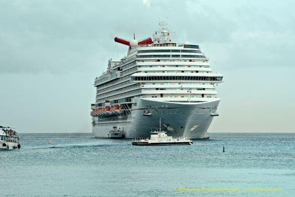 MV CARNIVAL BREEZE 4