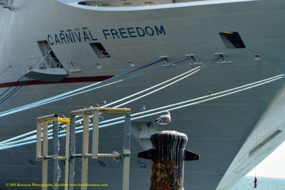 MV CARNIVAL FREEDOM 2@