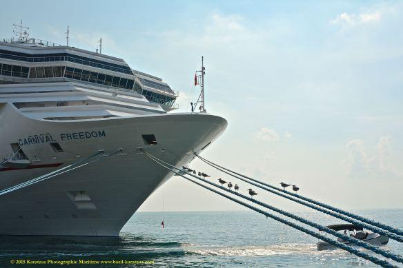 MV CARNIVAL FREEDOM 4@