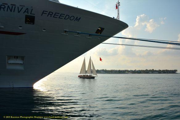 MV CARNIVAL FREEDOM 8a