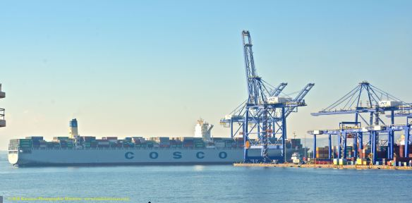 MV COSCO FORTUNE 1@