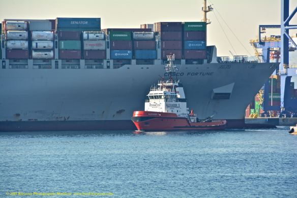 MV COSCO FORTUNE 2@