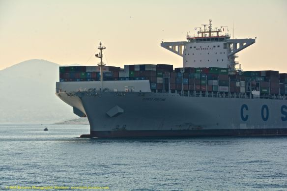 MV COSCO FORTUNE 5@