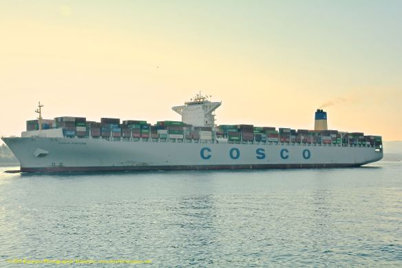 MV COSCO FORTUNE 6@