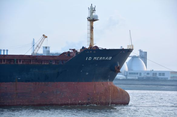 MV ID MERMAID 11 BMK_1392